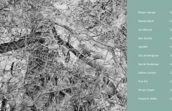 voorjaarsexpositie De Kliuw | Heeze 22 – 31 mei 2015